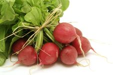 Bundle Of Fresh Radishes Stock Photography