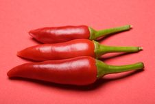 Free Pepper Stock Photos - 2616803
