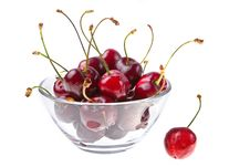 Cooled Sweet Cherries Stock Images