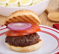 Free Hamburger On Grilled Bun Royalty Free Stock Photos - 26102258
