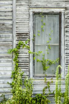 Free Old Gray Window Stock Photo - 26106770