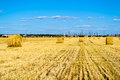 Free Farm Field With Hay Bales Royalty Free Stock Image - 26115086