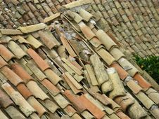 Free Remains Of A Roof With Broken Tiles Royalty Free Stock Image - 26111736