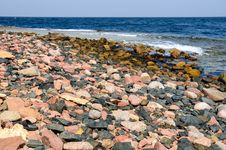 Free Rocky Beach Royalty Free Stock Images - 26112259