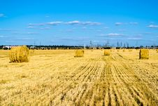 Farm Field With Hay Bales Royalty Free Stock Image