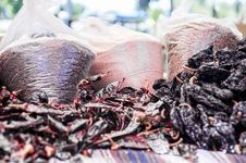 Dried Peppers &x28;2 Of 2&x29; Royalty Free Stock Photography