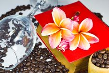 Free Coffee Beans With Red Flowers Stock Image - 26118121