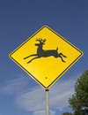 Free Wildlife Crossing Warning Sign Stock Image - 26138011