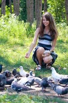 Free Girl Feeding Pigeons Royalty Free Stock Image - 26131686