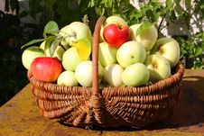 Free Basket Of Apples Royalty Free Stock Photography - 26132407