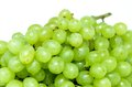 Free Bunch Of Grapes Royalty Free Stock Photography - 26147567