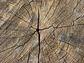 Free Wooden Dark Background Stock Images - 26148074