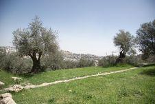 Free Hebron City Stock Photos - 26140023