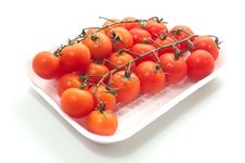 Free Cherry Tomatoes On Vine With Water Drops. Royalty Free Stock Photo - 26140045