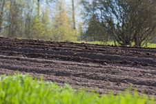 Free Agricultural Soil In Springtime Stock Photos - 26140393