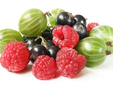 Free Assortment Of Berries Royalty Free Stock Photo - 26141905