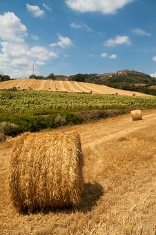 Free Tuscan Countryside Stock Photos - 26144203
