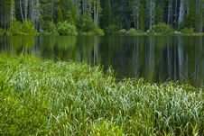 Free Lush Green Meadow And Lake Stock Photo - 26152310
