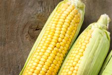 Fresh Ripe Corn Stock Photo