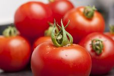 Free Fresh Tomatoes Stock Images - 26155694