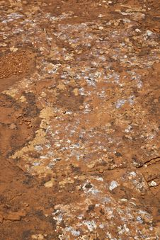 Free Lichen On Red Rock Royalty Free Stock Photos - 26161308
