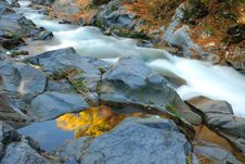 Free Autumnal River Stock Images - 26166174
