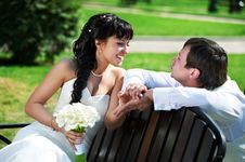 Free Bride And Groom On Wooden Bench Stock Image - 26168251