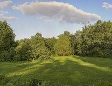 Free Summer Garden. Stock Photography - 26173492