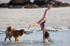 Free Girl And Dog At The Beach Royalty Free Stock Images - 26180539