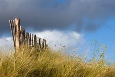 Free Wooden Fence On The Dunes Stock Photo - 26183230