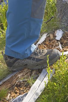 Free Hiking Shoe. Royalty Free Stock Photos - 26184358