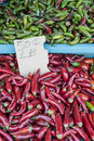 Free Fresh Hot Peppers &x28;1 Of 2&x29; Royalty Free Stock Photography - 26192337