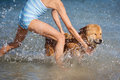 Free Young Girl And An Elo Puppy Have Fun In The Sea Stock Photos - 26197413