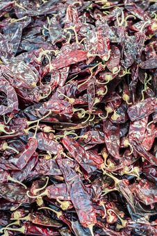Dried Peppers &x28;1 Of 2&x29; Stock Image