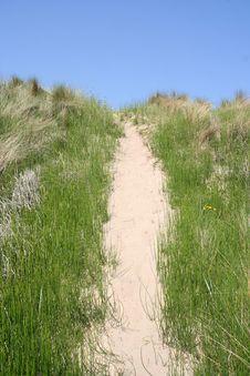Free Dune Path Stock Photography - 2620602