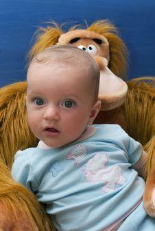 Free Baby And Monkey Royalty Free Stock Photo - 2624045