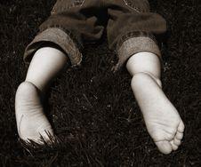 Baby Feet Royalty Free Stock Image