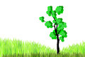 Free Tree  And  Green Grasses Royalty Free Stock Photo - 26206065