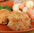 Free Breaded Chicken Dinner Stock Photography - 26206942
