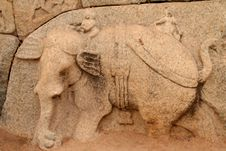 Free Hampi Bas Relief Royalty Free Stock Images - 26204099