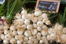 Free Spring Onions On A Market Stall Royalty Free Stock Photography - 26205587
