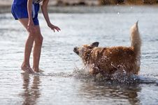 Dog Shakes Off The Water In Front Of A Girl Royalty Free Stock Photo