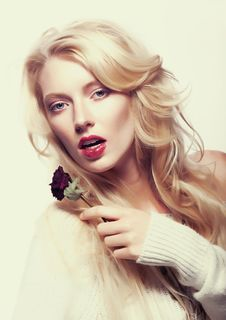 Free Pretty Female Face. Blond Long Hair. Red Flower Royalty Free Stock Image - 26209276