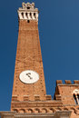 Free Torre Del Mangia Royalty Free Stock Photo - 26212405