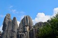 Free Stone Forest Stock Photos - 26213943