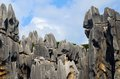 Free Karst Landforms,Stone Forest Royalty Free Stock Photography - 26214017