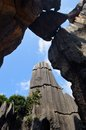 Free Yunnan Stone Forest Stock Photo - 26214670