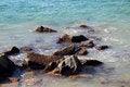 Free Ocean Splashing On The Rocks Royalty Free Stock Image - 26215756
