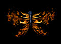 Free Butterfly Shape Flame On Match Isolated On Black Stock Image - 26218921