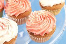 Free Pink Cupcake Royalty Free Stock Photos - 26210548